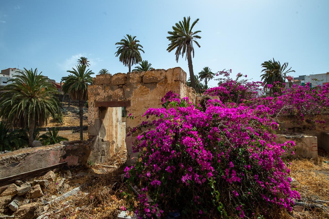 Gran Canaria | Como un oasis en el desierto 8