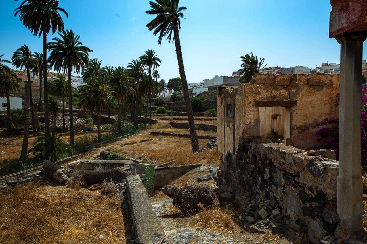 Gran Canaria | Como un oasis en el desierto