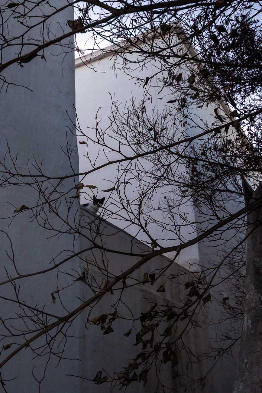 Lanzarote | casa abandonada: Okupa en Playa Honda 18