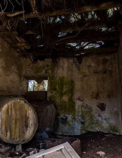 LANZAROTE | bodega abandonada 3
