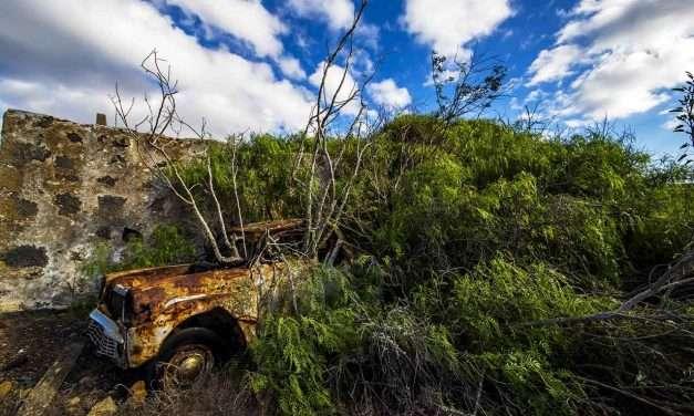 LANZAROTE | bodega abandonada