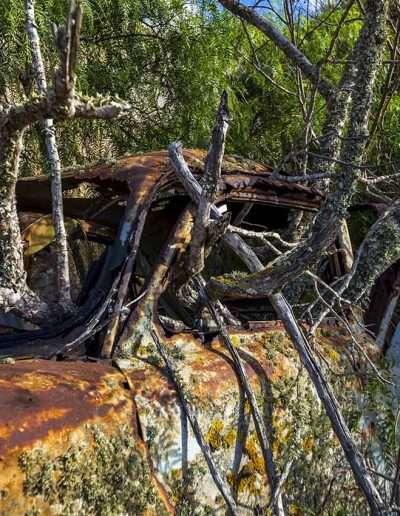 LANZAROTE | bodega abandonada 11